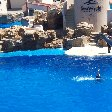 Sea World tickets San Diego United States Diary Tips