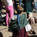 Excursion to Otavalo market Ecuador Photographs