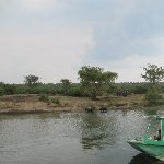 Uganda wildlife safari Kasese Trip Vacation