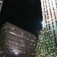 Christmas holiday in New York United States Blog Experience