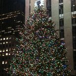 Christmas holiday in New York United States Vacation Photos