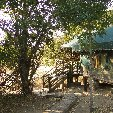 Kruger National Park camping safari Mpumalanga South Africa Photo Gallery Kruger National Park camping safari