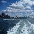 Sydney Whale Watching Tour Australia Diary