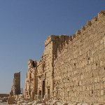 Guided Tour of Ancient Palmyra Syria Diary Tips Travel to Damascus Syria