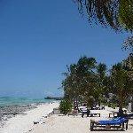 Hotel Essque Zalu Zanzibar Zanzibar City Tanzania Blog Experience Karafuu Hotel Beach Resort Zanzibar