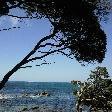 Cape Naturaliste Australia Trip Picture