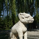 Things to do in Beijing China Album Photographs