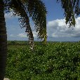 Holiday in Bonaire, a Caribbean Cruise Netherlands Antilles Travel Gallery Holiday in Bonaire, a Caribbean Cruise