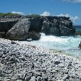 Holiday in Bonaire, a Caribbean Cruise Netherlands Antilles Review Picture