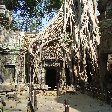 Siem Reap Temple Tour Cambodia Vacation Pictures