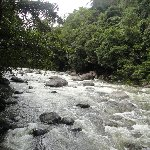 Cape Tribulation tours from Cairns Australia Trip Vacation Cape Tribulation tours from Cairns