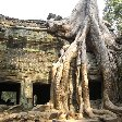 Angkor Cambodia Travel Photo
