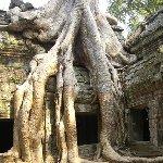 Angkor Cambodia Diary Information