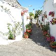 Alberobello Italy Blog Pictures