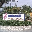 Chogogo Resort Curacao Jan Thiel Netherlands Antilles Photo Gallery Chogogo Resort Curacao
