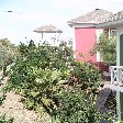Chogogo Resort Curacao Jan Thiel Netherlands Antilles Holiday Adventure Chogogo Resort Curacao