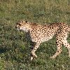 Tsavo Kenya Blog Photo
