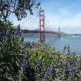 Tour San Francisco United States Travel Tips