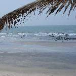 Holiday in Gambia Serrekunda Vacation