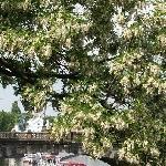 Three days Stay in Prague Czech Republic Travel Blogs