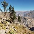 Adventure Travel Colca Canyon Peru Travel Photo