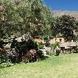 Adventure Travel Colca Canyon Peru Holiday Photos