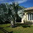 Rental Villa on Curacao Willemstad Netherlands Antilles Vacation Photos
