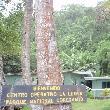 Puerto Jiminez Hostel Costa Rica Puerto Jimenez Diary Tips