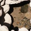 South America Peru Nazca