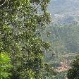 Bandarawela Sri Lanka by Train Travel Blog