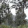 Arusha Tanzania Arusha