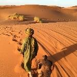 4 Days & 3 Nights Desert Tour From Fez Tangier Morocco Album Sharing