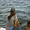 Fresh lobster in Cuba. Cuba